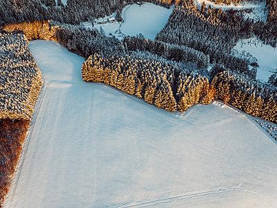 Waldgebiete im Schnee - p586m1131898 von Kniel Synnatzschke