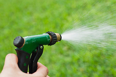 Person using spray nozzle on garden hose to water lawn, cropped - p624m710906f by Michele Constantini