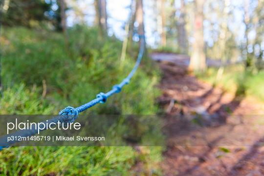 Rope on hiking trail