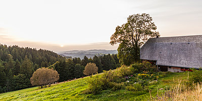 Germany, Baden-Wurttemberg, Black Forest, Black Forest farmhouse near Thurner at sunset - p300m1550083 by Werner Dieterich
