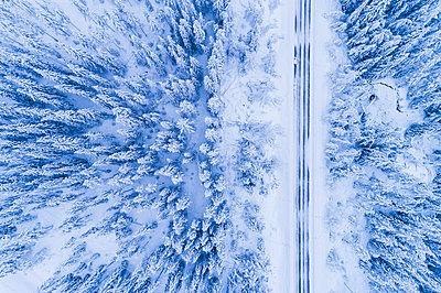 Winter road through forest - p312m1472644 by Mikael Svensson