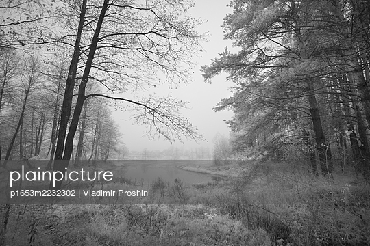 p1653m2232302 by Vladimir Proshin