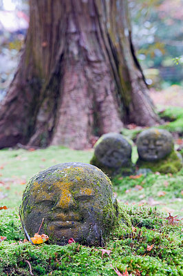 Sanzen in temple dating from 986, Kyoto, Japan, Asia - p8711611 by Christian Kober