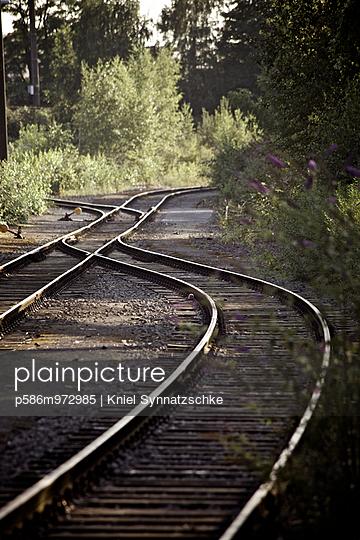 Alte Gleise und eine Weiche zwischen Bäumen - p586m972985 von Kniel Synnatzschke