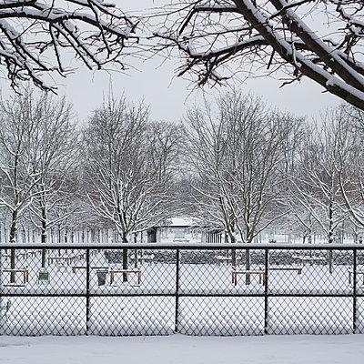 Tuilerien im Schnee - p1138m1539666 von Stéphanie Foäche