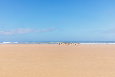Morocco, Caravan at the beach - p300m2030007 von Michael Malorny