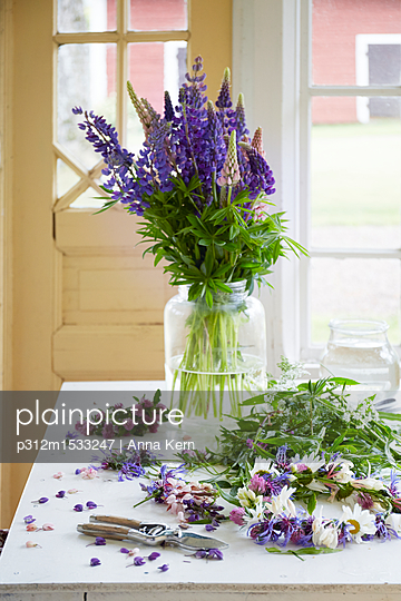 plainpicture | Photo library for authentic images - plainpicture p312m1533247 - Fresh flowers in vase - plainpicture/Johner/Anna Kern