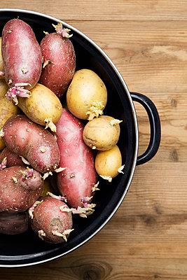 Potatoes - p1149m1123253 by Yvonne Röder