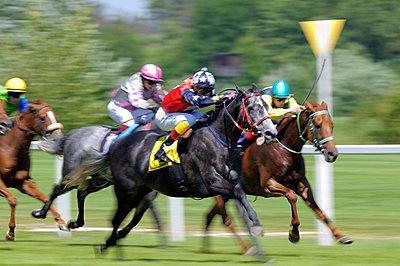 Pferderennsport - p6050053 von H. Kühbauch