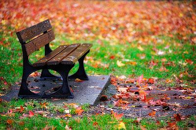 Herbst - p8290263 von Régis Domergue