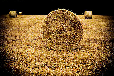 Bale of straw - p4450279 by Marie Docher