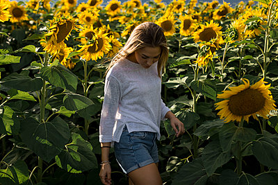 Lonely woman in a sunflower field in summer - p1166m2084596 by Cavan Images