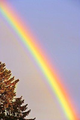 Rainbow - p1418m1572000 by Jan Håkan Dahlström