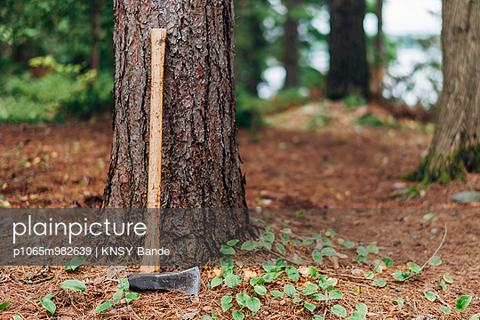 Axe leaning at trunk - p1065m982639 by KNSY Bande