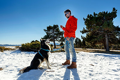 Mature man training dog in snow covered landscape - p429m1407953 by Quim Roser
