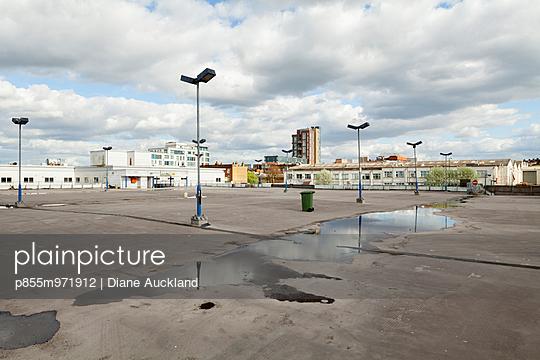 p855m971912 von Diane Auckland