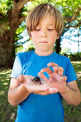 Boy holding beetle - p312m1025013f by Hans Berggren
