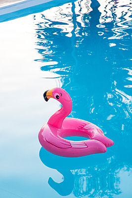 Bath toy  Flamingo - p958m2122368 by KL23
