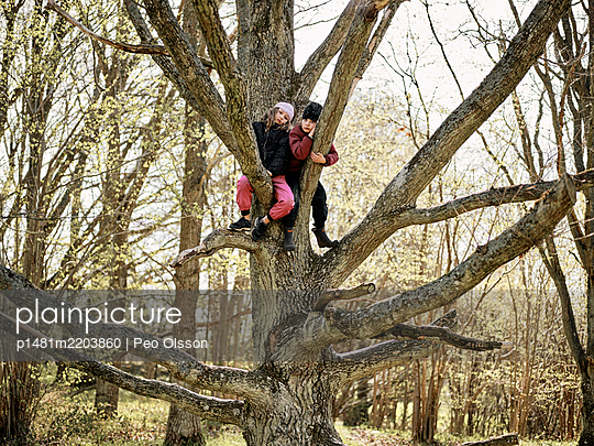Two children in a tree - p1481m2203860 by Peo Olsson