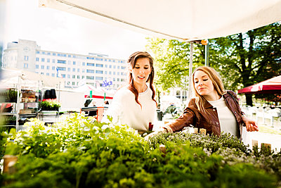 Woman buying plants on display at store - p1185m1080763f by Astrakan