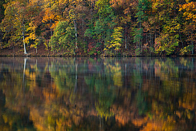 Reflection of autumn forest in a lake, North Carolina - p1480m2228753 by Brian W. Downs