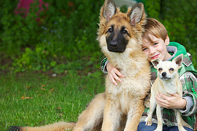 Boy Hugging Two Dogs - p669m713884 by Jutta Klee photography