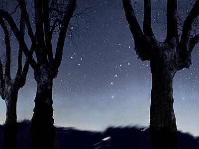 Horoscope - p9792405 by Burkart