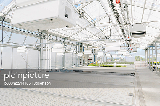 interior of modern greenhouse - p300m2214165 by Joseffson