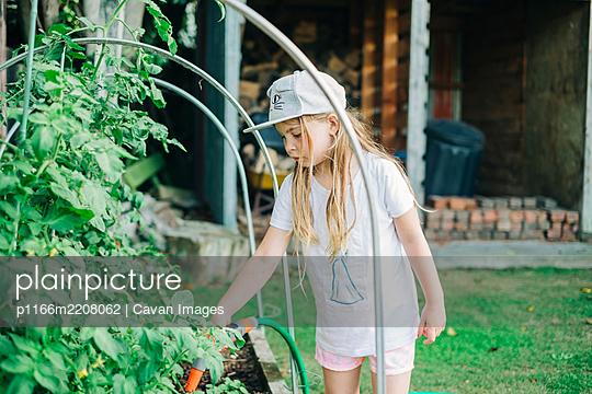 p1166m2208062 von Cavan Images