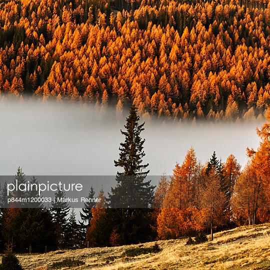 Tamsweg, Österreich - p844m1200033 von Markus Renner