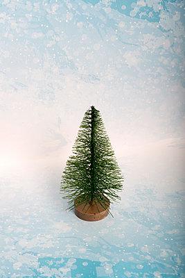 kleiner Tannenbaum - p451m2031975 von Anja Weber-Decker