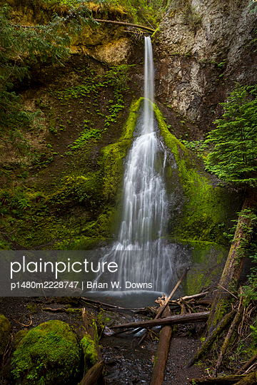 Marymere Falls, Olympic National Park, Washington State - p1480m2228747 by Brian W. Downs