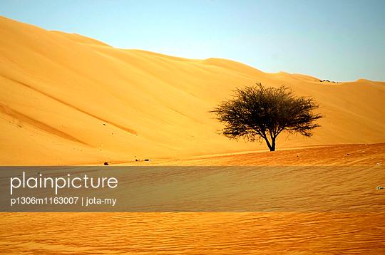 Wüstenbaum - p1306m1163007 von jota-my