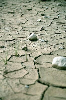 Dürre - p1073m816951 von Benjamin Schmid