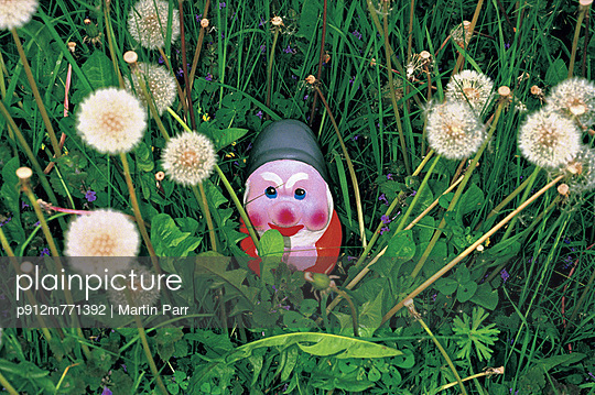 Garden gnome - p912m771392 by Martin Parr