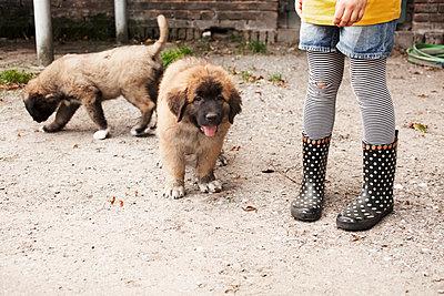 Hundebabys mit Kinderbeinen - p1348m1573453 von HANDKE + NEU