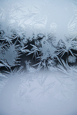Ice crystals on glass - p4423332f by Design Pics