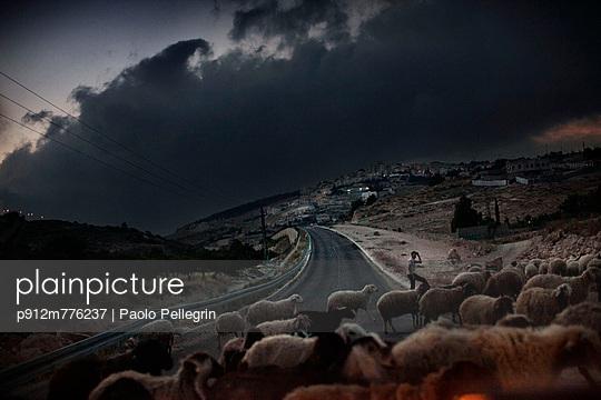 p912m776237 von Paolo Pellegrin
