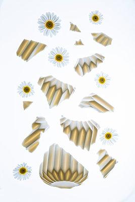 Broken vase of flowers - p1149m2187969 by Yvonne Röder
