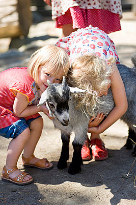 Girl embracing goat at zoo - p31227411f by Ulf Huett Nilsson