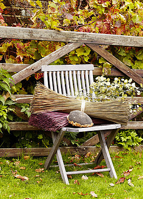 Dried flowers on wooden chair at gate in Essex garden - p349m790299 by Brent Darby