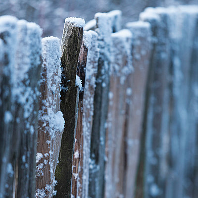 Snow covered wooden barrier - p429m859841 by Ross Woodhall