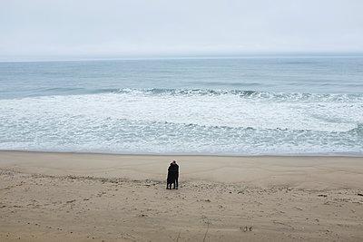 Couple on beach - p956m1515680 by Anna Quinn