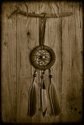 Dreamcatcher with dove and magpie feathers - p1028m1042284 by Jean Marmeisse