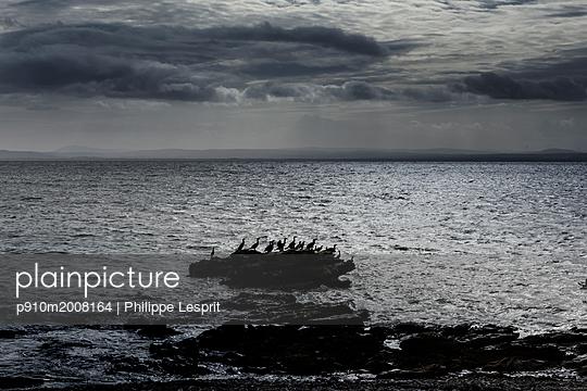 p910m2008164 von Philippe Lesprit