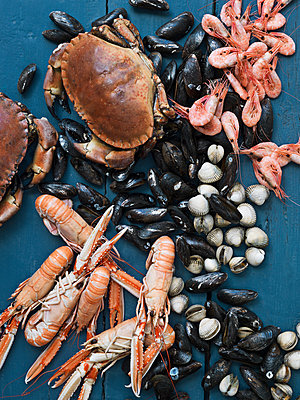 Seafood against blue wooden background - p312m1075987f by Matilda Lindeblad
