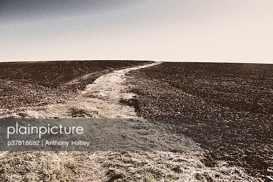 Path through ploughed field - p37816692 by Anthony Hatley