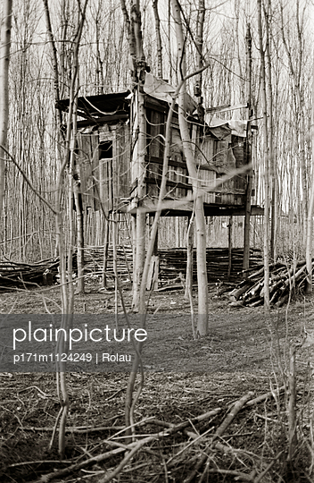 Tree house - p171m1124249 by Rolau