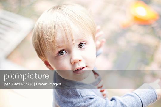 p1166m1182837 von Cavan Images