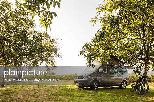 Campinbus parkt auf einer Wiese unter Bäumen - p948m2142118 von Sibylle Pietrek